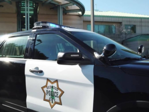 Domestic violence incident in downtown Redwood City leads to arrest of pimp