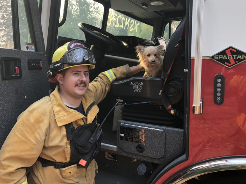 Redwood City firefighters' Camp Fire pet rescue
