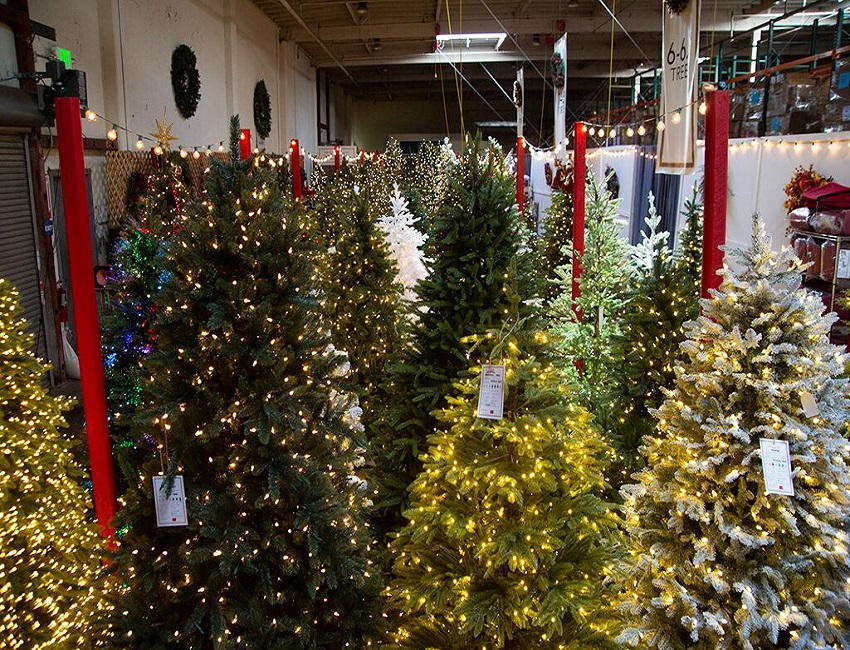 Christmas Parafe Redwood City 2020 Not faux news: Yes, Virginia, a Christmas tree company grows in