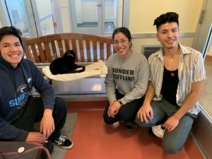 Family adopts cat found on San Mateo Bridge