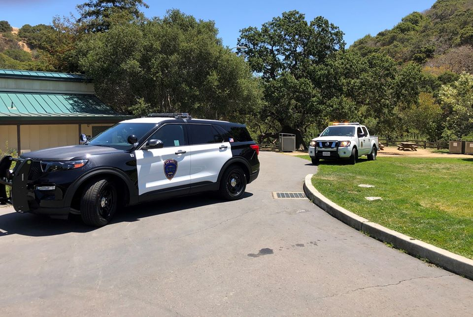 San Mateo: Mountain lion sighting in Laurelwood Park