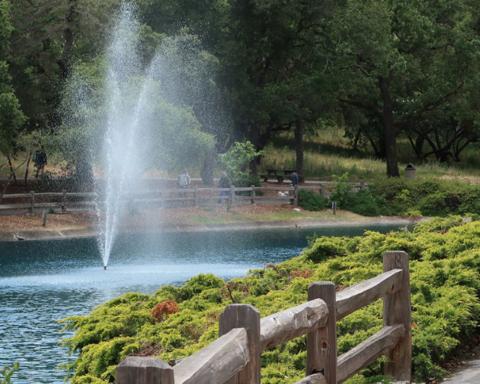 Menlo Park councilman calls for ballot measure to prevent development in parks