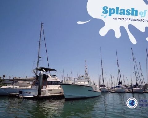 Port of Redwood City recognized for 'Splash of Fun' campaign